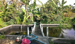 A project by Robert from Homagrown. The pond on the left was drained to be turned into a giant worm bin.
