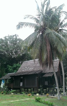 Malay house under coconut trees