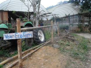Green Forest Project was sited beside Vision Eco Farm, which is a commercial organic farm started by a visionary farmer Mr Ho. They adopt good growing principles but it's not a beautiful place so we tried to beautify it.