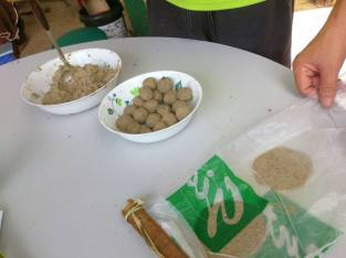 Fermenting Soybean