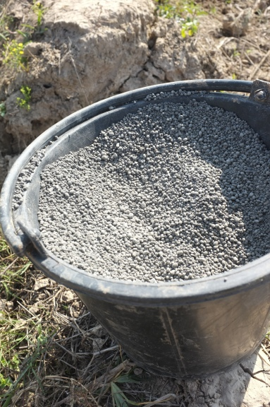 Bat guano, a very powerful organic fertilizer. It has been broken down and does not smell.