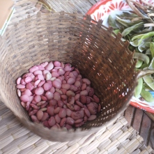 Red lima beans that we peeled.