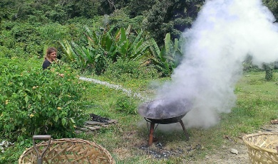 Kill the fire by spraying water but make sure you stand far away!