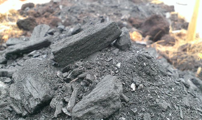 Small bits of biochar and biochar powder.