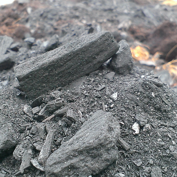 Small bits of biochar and biochar powder.
