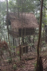 The toilet and shower is underneath the treehouse.