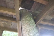 Floor resting on the tree.