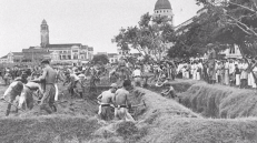 Our padang was turned into a farm! Source: National Archives