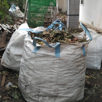 Leaves collected and ready to be used as mulch